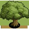 Oak Tree 2-icon