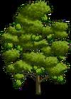 Durian Tree2-icon