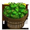 Green Kutjera Tomato Bushel-icon