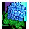 Hydra Bloom-icon