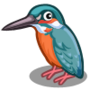 Kingfisher collection-icon