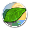 Teak Leaf-icon