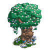 Elder Berry Tree-icon