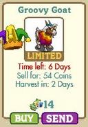 Groovy Goat Market-info