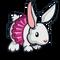 Tutu Bunny-icon