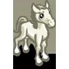 White Arabian Foal-icon