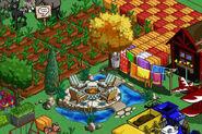 Dream Patio Farm