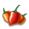 Habanero Chili-icon
