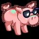 Tanning Pig-icon