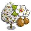 Callery Pear Tree-icon