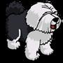 Sheep Dog Adult Black-icon