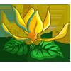Ylang Ylang-icon