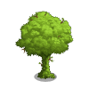 Hedge Tree-icon