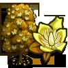 Tulip Poplar-icon