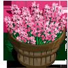 English Lavender Bushel-icon