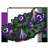 Eyeball Flower Bush-icon