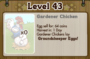 Gardener Chicken Inside Chicken Coop