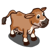 Jersey Cow-icon