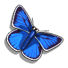 Collect bluebutterfly