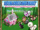 Cupcake Doghouse