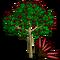 Cecropia Tree-icon