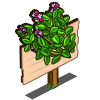 Marjoram Mastery Sign-icon