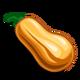 Squash-icon