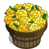 Yellow Marigold Bushel-icon