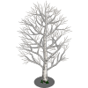 Birch Tree-icon.png