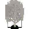 Birch Tree-icon