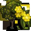 Giant Gorse Tree-icon