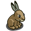 Irish Hare-icon