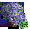 Purple Hanging Flower Tree-icon