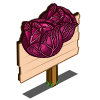 Red Cabbage Mastery Sign-icon