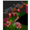 American Robin-icon