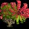 Octopus Tree-icon