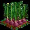 Onion-super