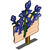Bluebell Mastery Sign-icon