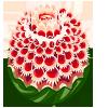 Watermelon Flower-icon