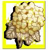 White Stone Flower-icon