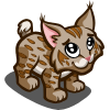 Baby Bobcat-icon
