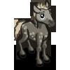Eriskay Pony Foal-icon