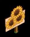 MasterySunflowers