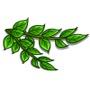 Curry Leaves-icon