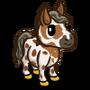 Mini Appaloosa Foal-icon