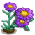 Purple Aster-icon