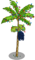 Acai Tree6-icon.png