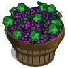 Grapes Bushel-icon