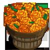 Orange Marigold Bushel-icon