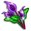 Purple Anthurium-icon